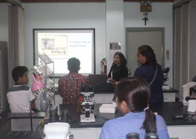 Workshops (6)
